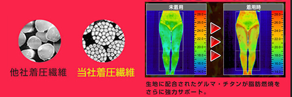 メディレギンスの繊維と代謝の特徴