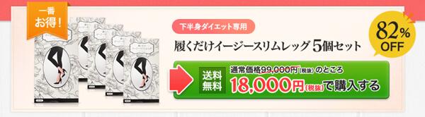 イージースリムレッグ5枚セット18000円